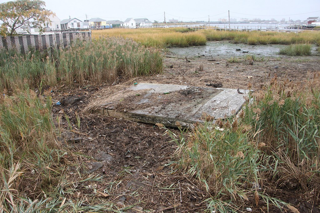 East 12 street marsh after cleanup