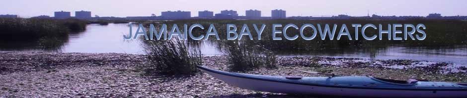 Jamaica Bay Ecowatchers